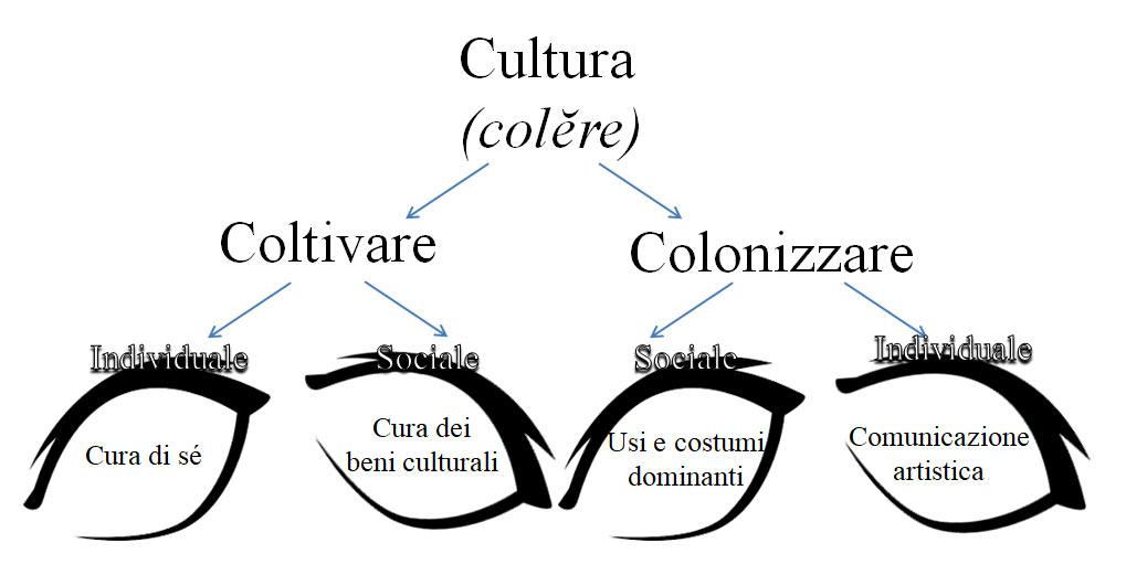 Etimo di Cultura