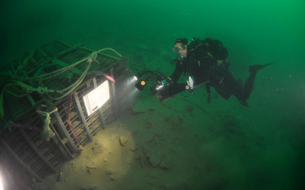 Nautilus, lo spumante che emerge dal lago d'Iseo