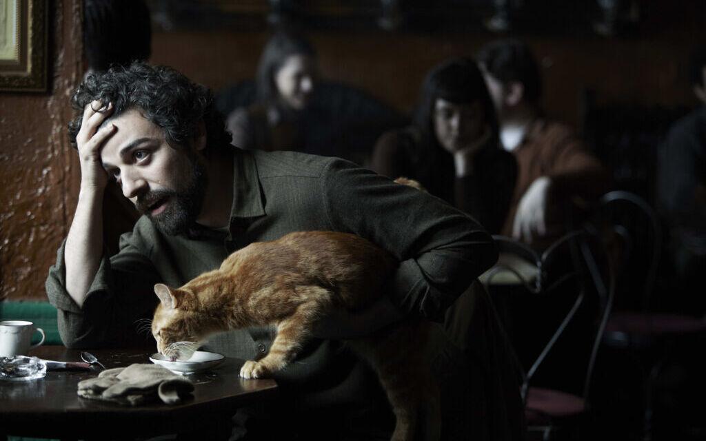 Quali sono i gatti più famosi del cinema?